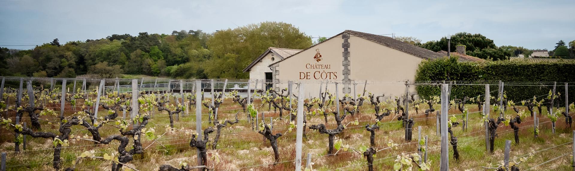Vignes et facade du Château de Côts